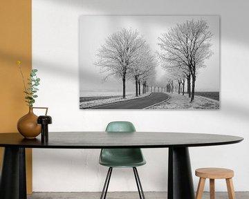 Winterstemming van Keith Wilson Photography