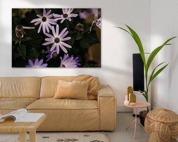 Kleine violette Gartenblume von Carla van Dulmen