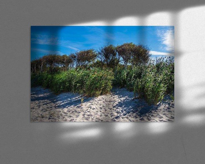 Beispiel: Der Weststrand auf dem Fischland-Darß von Rico Ködder