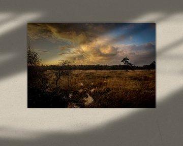 Sumpf mit Horizont von Frank Ketelaar