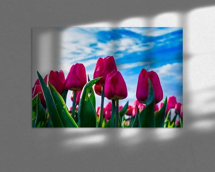 Sfeerimpressie: Bloeiende rode tulpen van Photo Henk van Dijk