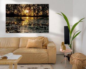 Coucher de soleil sur une lagune dans le quartier de Commewijne, Suriname sur Marcel Bakker
