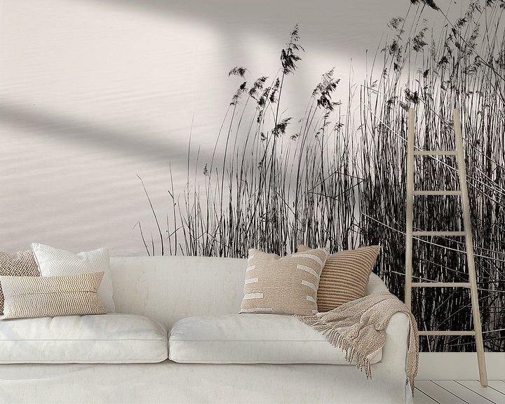 Beispiel fototapete: Reeds At The Lake von Lena Weisbek