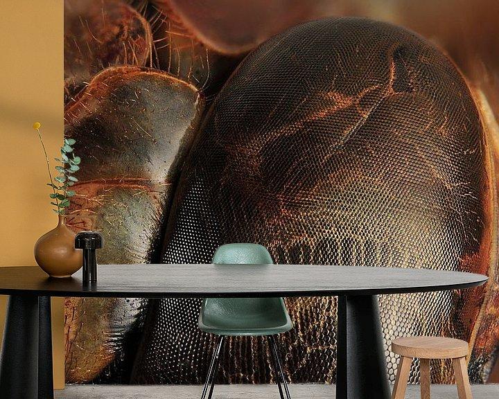 Sfeerimpressie behang: Libelle oog van Rob Smit