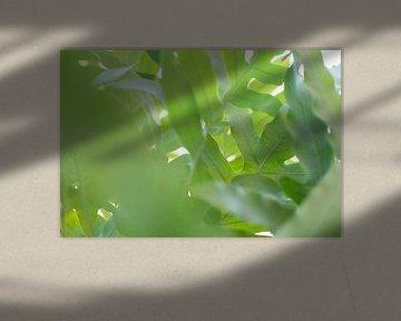 Groene jungle van Lisette van Gameren