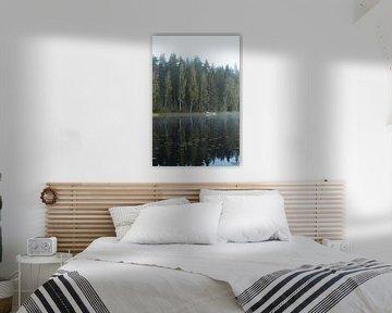 Ein typisch schwedischer See von Maarten Starink Photography