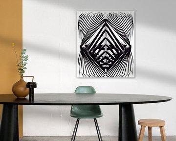 Abstraktes Schwarz-Weiß von Romana Vac