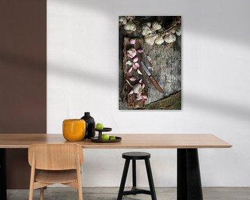 Knoflookbollen op boomschors 12506943 van BeeldigBeeld Food & Lifestyle