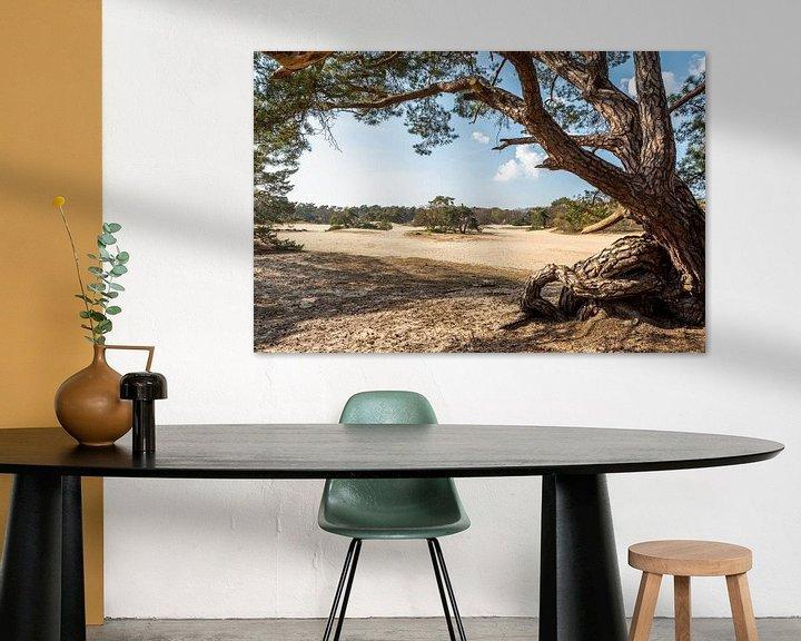 Beispiel: Blick auf die Kurzen Dünen von Rob IJsselstein