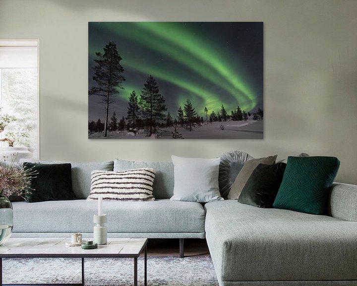 Beispiel: das Nordlicht mit Bäumen im Vordergrund von Robin van Maanen