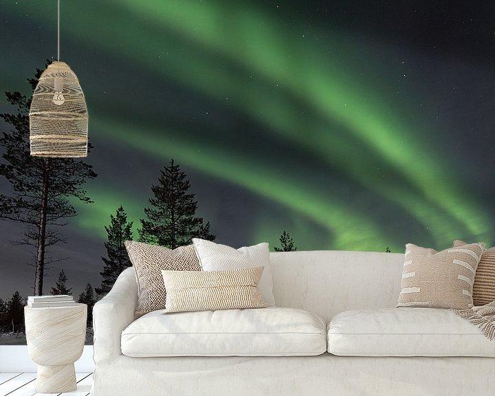 Beispiel fototapete: das Nordlicht mit Bäumen im Vordergrund von Robin van Maanen
