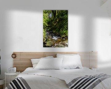 Wasserfall in der Trossachs von Johan Zwarthoed