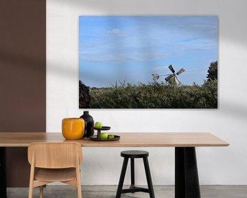 Foto van oude windmolen in natuurlandschap van grasland, riet en bomen van Breezy Photography and Design