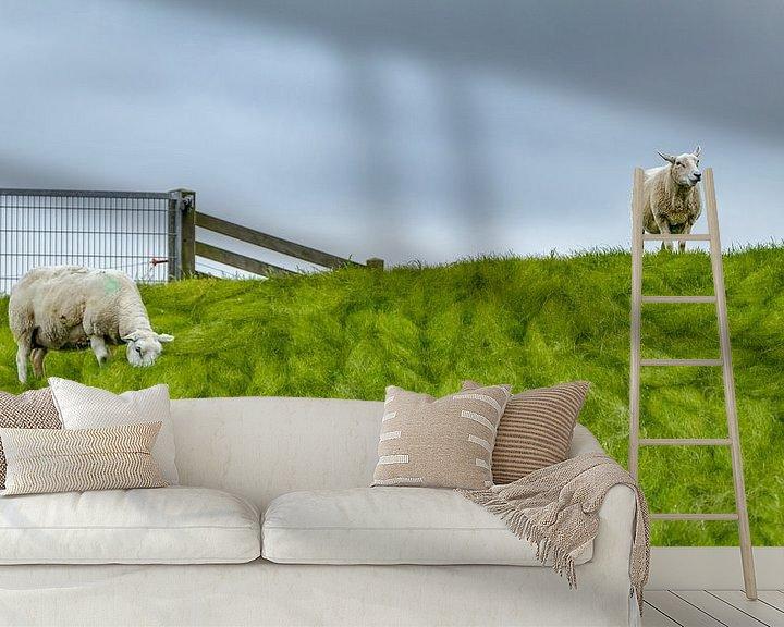 Beispiel fototapete: Schafe auf dem Deich | Terschelling von Marianne Twijnstra-Gerrits