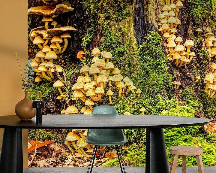 Sfeerimpressie behang: Familie paddenstoelen van Rob Smit
