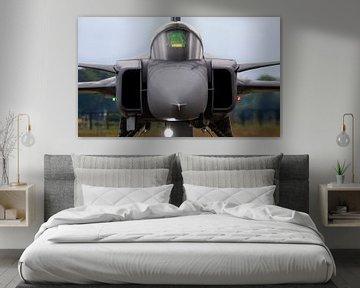 Saab JAS39 Gripen staat klaar voor zijn display op de luchtmachtdagen 2019 van Stefano Scoop