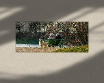 Twee oudjes namijmerend op een bankje aan de Mookerplas van Jeroen Hoogakker