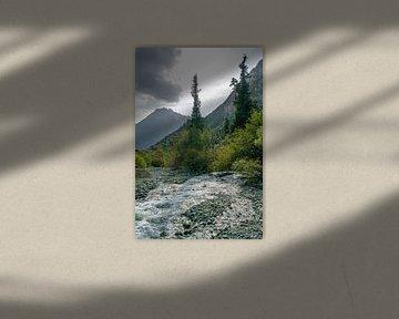 Bomen bij een rivier in Kirgizië van Mickéle Godderis