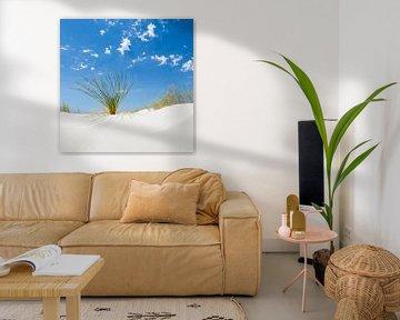 White Sands Impression van Melanie Viola