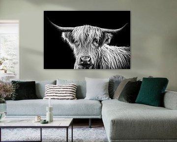 Highlander-Kuh in schwarz-weiß von Atelier Liesjes