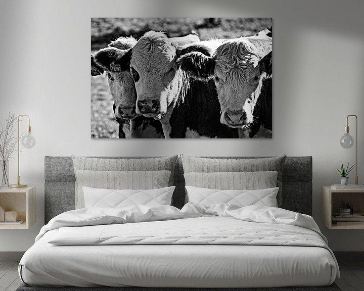 Beispiel: Drei Kühe in schwarz-weiß von Atelier Liesjes