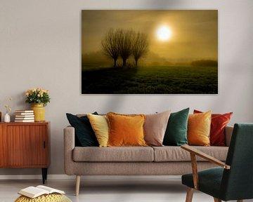 Mistige ochtend in Noord Holland van Mike Bot PhotographS