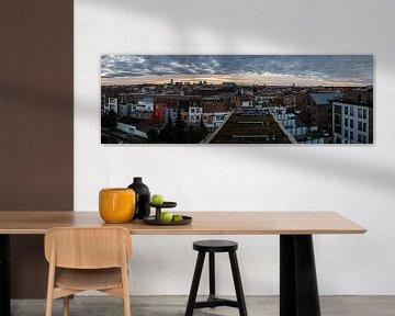 Ongewoon panorama over Brussel van Werner Lerooy