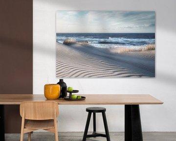 Winterse duinen aan de Belgische kust van Rik Verslype