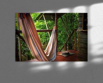 Hangmat en poes in de jungle van Bastimentos Island van Michiel Dros