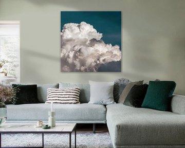 Zwerm vogels in een dik wolkendek in de lucht van Roger VDB