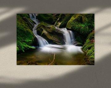 Kleiner Bach im Schwarzwald von PhotoArt Thomas Klee