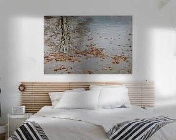 herfstbladeren van Huib Vintges