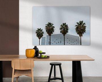 Palmen von Huib Vintges