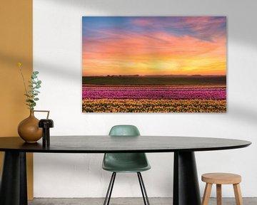 Zonsondergang in het tulpenveld van Michael Valjak
