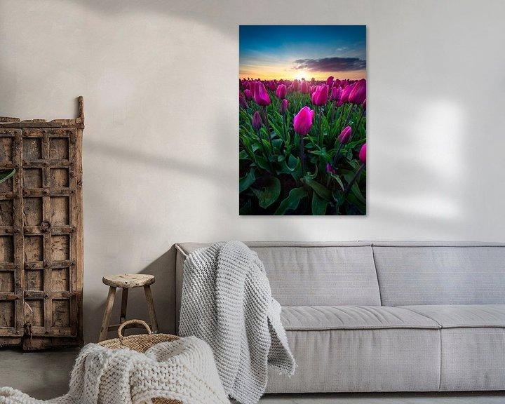 Beispiel: Die erstaunlichen Tulpen in den Niederlanden von Costas Ganasos