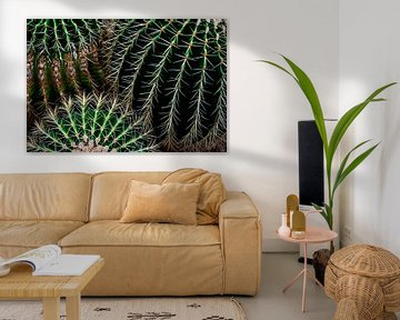 Kaktus-Muster von Anouschka Hendriks