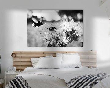 Blumen und Bienen in schwarz-weiß von Nick van Dijk