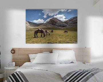 Pferde im Gras von Mickéle Godderis