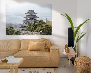 Matsumoto kasteel van Armin Palavra
