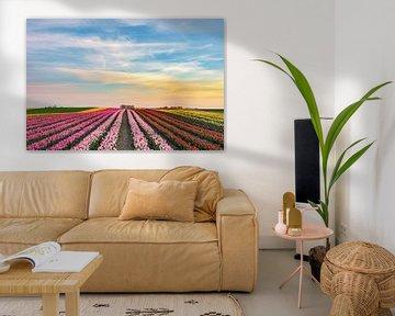 s Avonds in een tulpenveld aan de Nederrijn van Michael Valjak