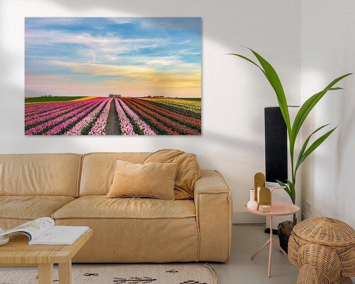 Sfeerimpressie: s Avonds in een tulpenveld aan de Nederrijn van Michael Valjak