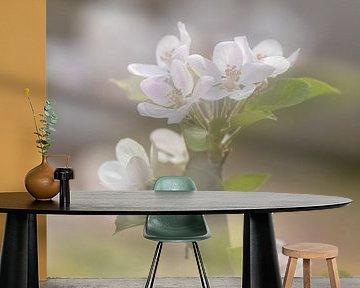 Voorjaarsboeket met appel bloesem van Karla Leeftink