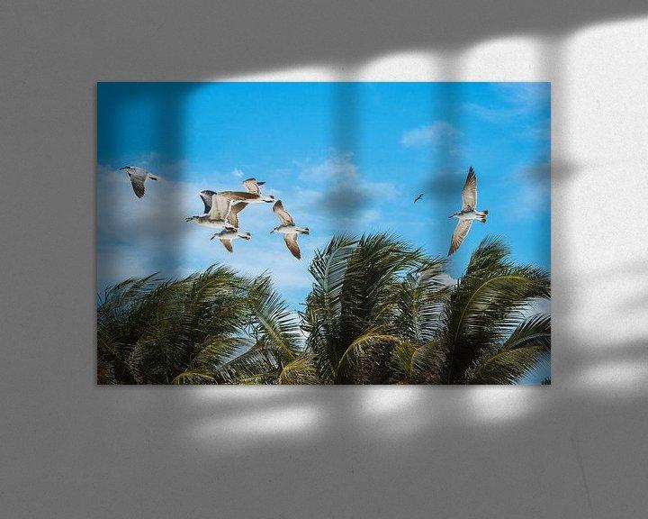 Sfeerimpressie: Vliegende meeuwen boven palmbomen op een blauwe lucht in Isla Holbox, Mexico van Michiel Dros