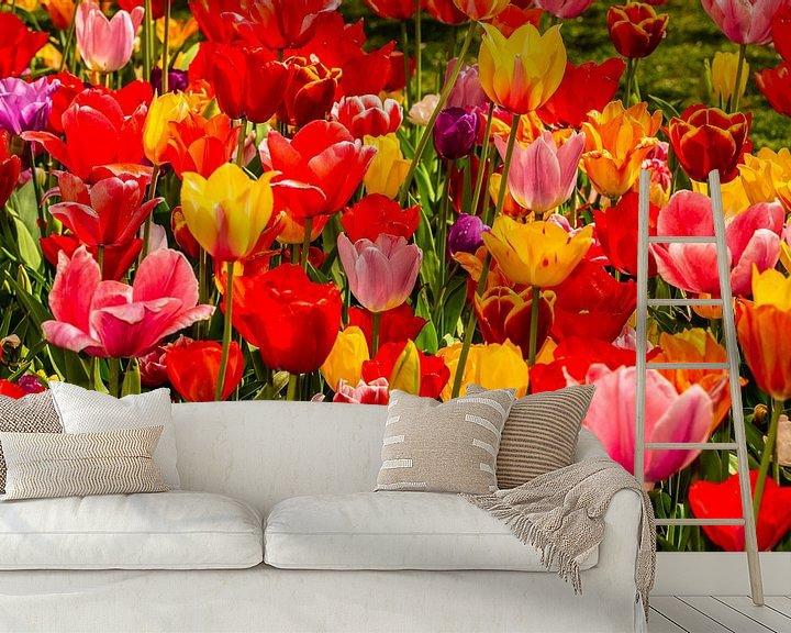 Sfeerimpressie behang: Tulips from Holland van Brian Morgan