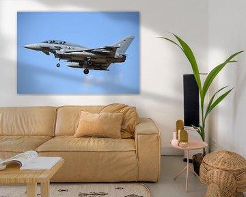 Eurofighter Typhoon / 31+28 / ETNN sur Thomas Laptin