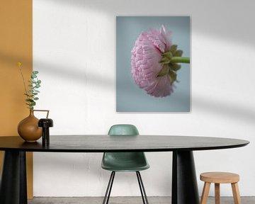 Hahnenfußblume von natascha verbij