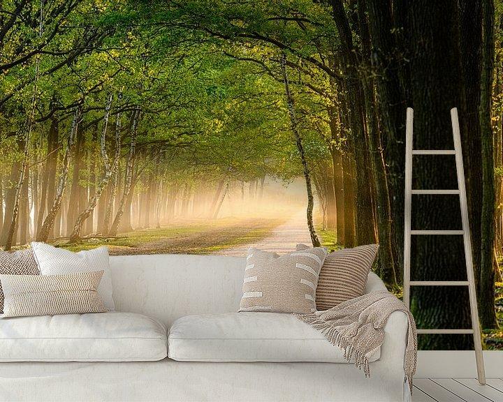 Sfeerimpressie behang: Bospad op een mistige ochtend van Wendy van Kuler