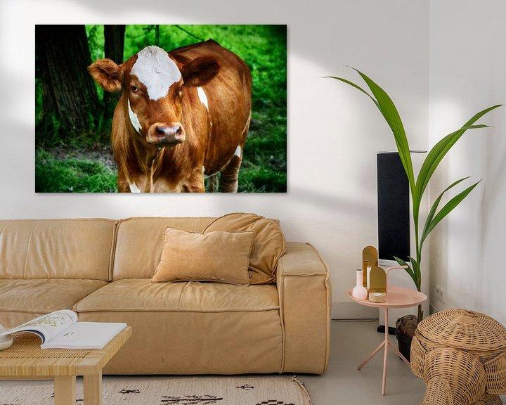 Sfeerimpressie: Een koe van RK