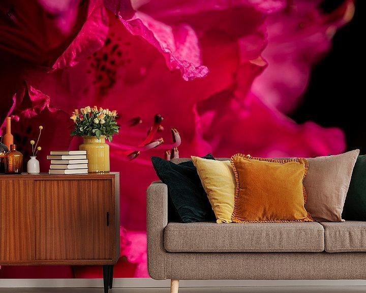 Beispiel fototapete: Rhododendron von Ingrid Aanen