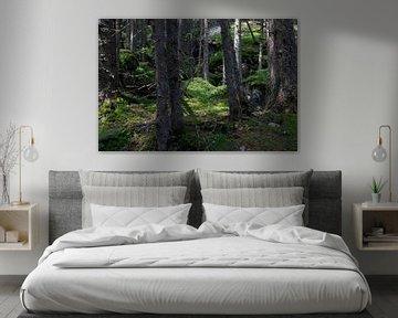 Forêt sur Thomas Jäger